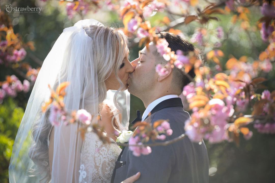 newlyweds-kiss-love-blooming-tree-spring-closeness
