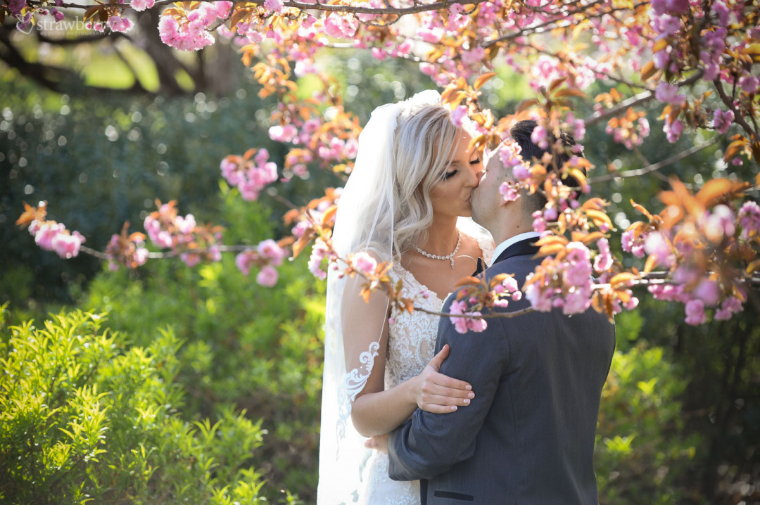 newlyweds-kiss-love-blooming-tree-spring-closeness3