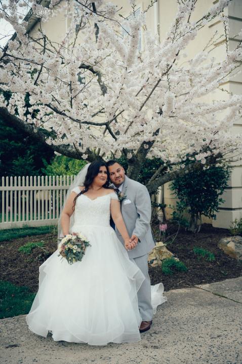 19-newlyweds-spring-blossom-cherry.jpg